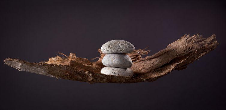 Pebbles on Bark